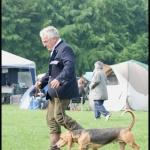jachthondenshow 2010